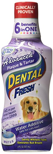 Dental Fresh Water Additive – Advanced Plaque and Tartar Formula for Dogs – Clinically Proven, Add to Pet's Water Bowl to Whiten Teeth, Eliminate Bad Breath and Improve Oral Health (8oz)