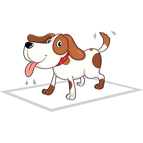 PupPee Pet Training Pads, Super Absorbent, Water Proof, Non Slippery, 60X45cm, 10 Pads