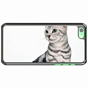 iPhone 5C Black Hardshell Case tabby sitting snout Desin Images Protector Back Cover