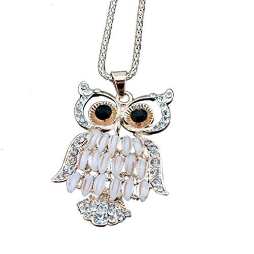 Time Pawnshop Charm Cute Hollow Owl Fashion Length Sweater Necklace (Noble Warrior Adult Costume)