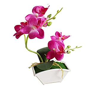 dezirZJjx Artificial Plants Artificial Butterfly Orchid Flower Phalaenopsis Home Office Decor with Flowerpot - Rose Red 19