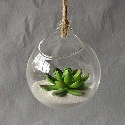 Amazon Com Felixstore Hanging Glass Vase Hanging Terrarium Glass