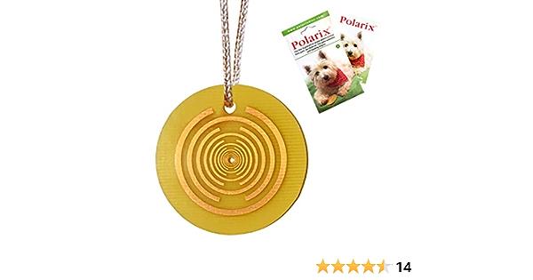 Polarix© per animal -Disco per sollievo dal dolore | Medicina alternativa di supplemento di articolazione del cane Instant Natural Healing for Dogs ...