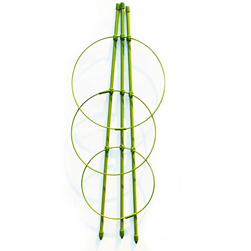 3-Pack Tomato Cage Garden Plant Support Rings, 18'' by rescozy