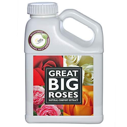 Great Big Roses Organic Rose Food Fertilizer, All Natural Liquid Compost Extract, 32 Ounce