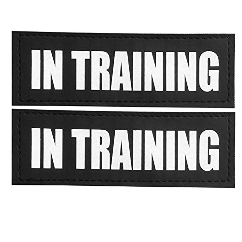 FAYOGOO Reflective in TrainingService