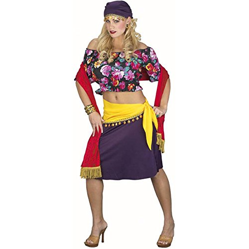 Adult Gypsy Princess Halloween Costume (Size: Standard 12)