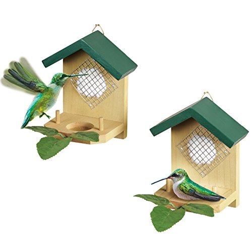 Hanging Hummingbird Nesters - Set Of 2, Beige (Small Hanging Platform Feeder)