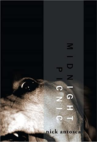 book cover of Midnight Picnic