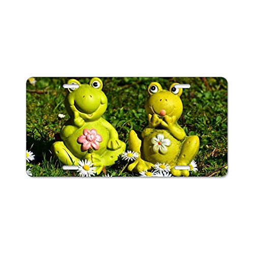 Khope Frogs Figures Funny License Plate Covers License Plate Frame Tag Holder 4 Holes ()