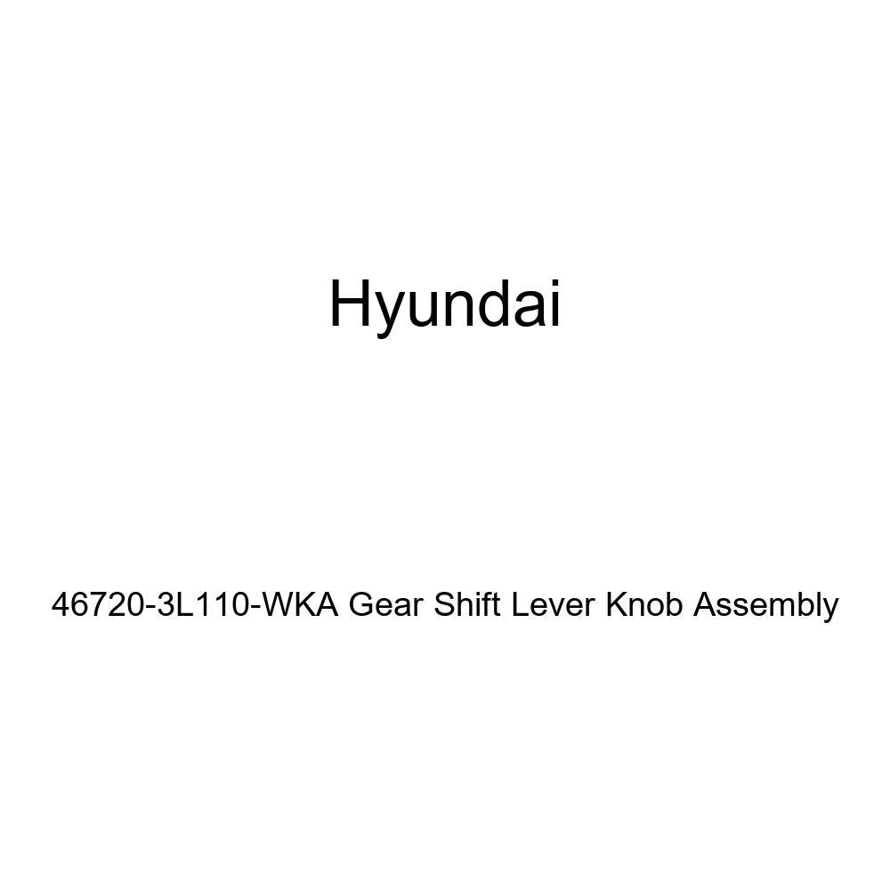 Genuine Hyundai 81681-28000 Sunroof Drain Hose