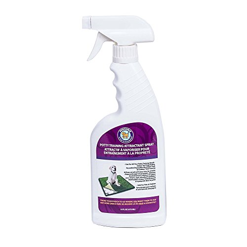 PoochPads Potty Training Attractant Spray, 16 fl. - Here Spray Go