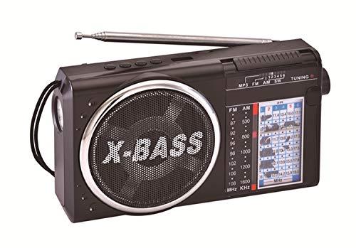Bluevalley - Radio portátil Am FM SW con Reproductor MP3, grabadora T-Flash, Linterna Recargable con Altavoz Transparente,...