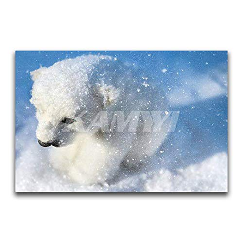 (NOveltyhua Square Diamond Embroidery Cross Stitch Animal Full Round Diamond Painting Snow Polar Bear DIY 3D Diamond Mosaic Winter Square Drill 50x75cm)