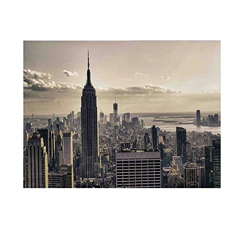 NYC Decor Photography Background,Aerial View of NYC in Winter Time American Architecture Historical Popular Metropolis Photo Backdrop for Studio,10x10ft