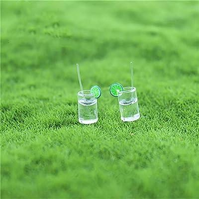 FAgdsyigao Miniature Doll House Fairy Garden Play Scene Model Doll House Accessories Mini Lemonade Cup Random Color: Kitchen & Dining