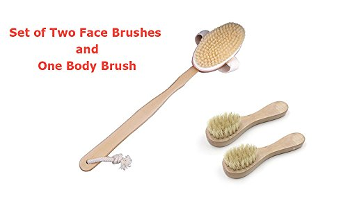 3 in 1- Natural Bristle Wooden Bath Body Brush for Wet or...