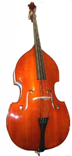 Rata Beginner Upright String Double Bass 4/4 Full Size for Students Teens Adults Orchestra Starter School by Rata Band