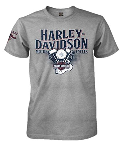 harley-davidson-mens-h-d-pride-crew-short-sleeve-t-shirt-heather-gray-2xl