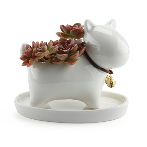 T4U Lovely Puppy Dog Design Ceramic Succulent Plant Pot / Cactus Flower Pots Container Porcelain Holder Planter Decoration with Golden Bell and Tray - Pack of 1