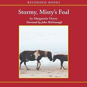 Stormy, Misty's Foal Audiobook