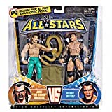 Mattel WWE Wrestling Exclusive All Stars Action Figure 2Pack Jake The Snake Roberts Vs. Randy Orton