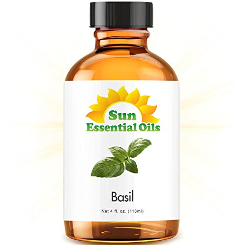 Basil (Large 4 ounce) Best Essential Oil