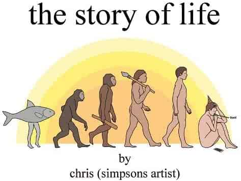 The Story of Life