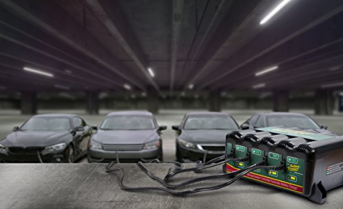 Buy battery maintainer