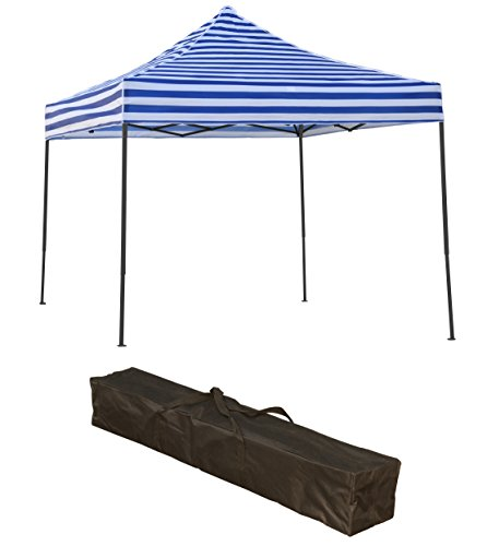 Trademark Innovations Lightweight Portable Canopy