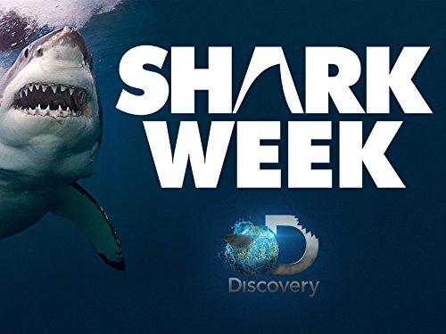 Amazon Com Shark Week Season 2011 Amazon Digital
