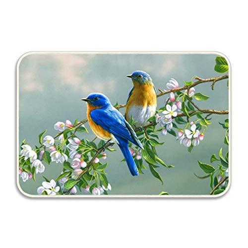 FnLiu Machine-Washable Door Mat Delicious Animal Bluebirds Indoor/Outdoor Decor Rug Doormat 20 by 32