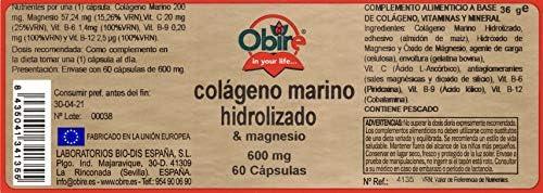 Colágeno marino hidrolizado + magnesio 600 mg. 60 capsulas con vitamina C, vitamina B6, vitamina B9 y vitamina B12. (Pack 3 unid.): Amazon.es: Salud y cuidado personal