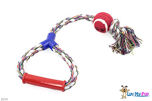 Interactive Braided Durable Aggressive Chewers product image