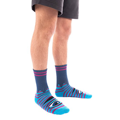 Toy Machine Sect Eye Navy/Purple Sock