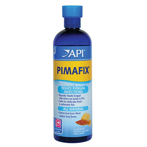 API Pimafix Antifungal Freshwater & Saltwater Fish Remedy 16 oz Bottle