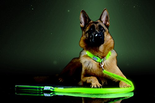 Pet Industries Premium LED Reflective Dog Leash, USB Rechargeable, Available in 6 colors (Atomic Green)