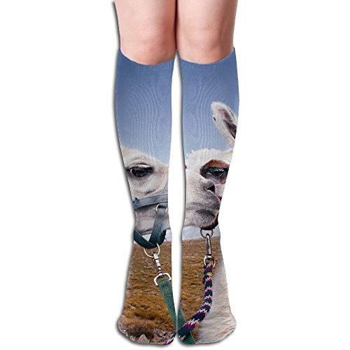 Tube High Couple Of Alpaca Keen Sock Boots Compression Long Stockings For Athletics,Travel Socks by LOOAVA