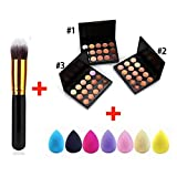 Zippem 15 Colors Concealer Palette Facial Cream Makeup Brush Drop Puff Set Makeup Sets