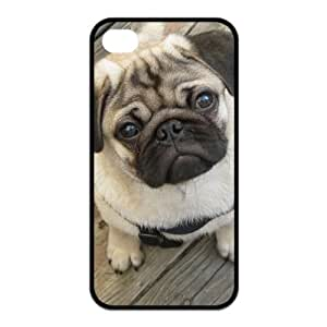 Toy Dog Pug iPhone 4 4S Case Popular Pug Pet Puppy Dog New Style Durable Case Cover at NewOne