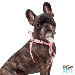 Martha Stewart Houndstooth Dog Harness Medium 14-22 in Pink