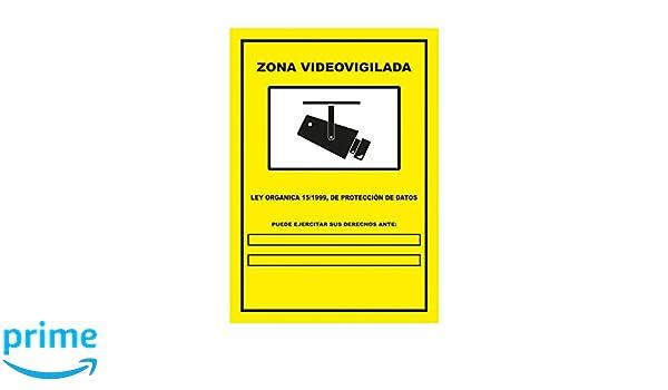 S21 Señalización C-005 Señal Zona Video vigilada, Multicolor: Amazon.es: Bricolaje y herramientas