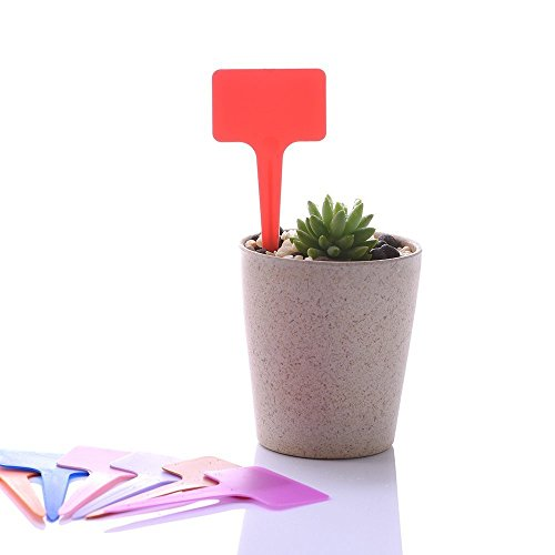 Plant Labels,New 120PCS Plastic Waterproof Plant Nursery T-type Tags  Markers Plant Stakes Re-Usable Plant Labels, 12 Colors