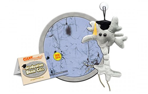 Giant Microbes Brain Cell Science Kit Graduation Edition