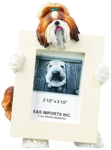 Shih Tzu, Tan and White Picture Frame Holds Your Favorite 2.5 by 3.5 Inch Photo, Hand Painted Realistic Looking Shih Tzu Stands 6 Inches Tall Holding Beautifully Crafted Frame, Unique and Special Shih Tzu Gifts for Shih Tzu Owners