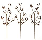 Silvercloud Trading Co.. Cotton Stems - 3 Stems/Pack - 10 Cotton Buds/Stem - 20'' Tall - Farmhouse Style Floral Display Filler - Rustic Wedding Centerpiece