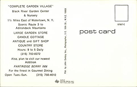 Black River Garden Center U0026 Nursery Watertown, New York Original Vintage  Postcard At Amazonu0027s Entertainment Collectibles Store