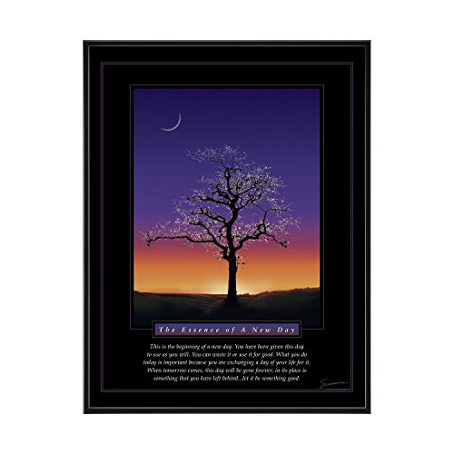Successories 25 In. black Aluminum Frame - Essence of A New Day Mini Motivational Poster
