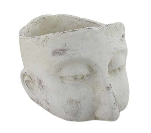 Weathered Finish Sculptural Cement Head Planter ()