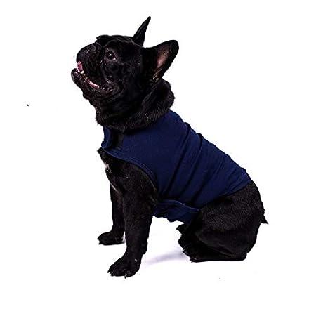 Anxiety Wrap Abrigo para perro 5.5-15lbs (M): Amazon.es: Productos para mascotas